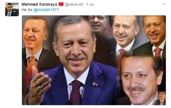 Amerikalı analistin Erdoğan tweet'ine müthiş cevaplar