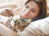 Adet öncesi sendromu 'nun sebebi kediniz olabilir