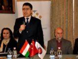 TİKA'dan Türk-Macar ortak sanatına destek