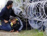 AB'den sığınmacı yardımı açıklaması
